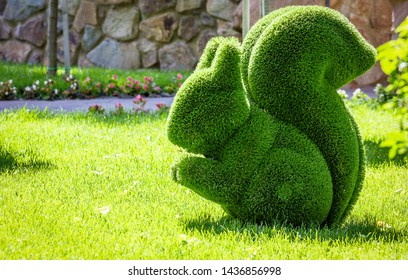 squirrel created from bushes at green animals. Topiary Gardens