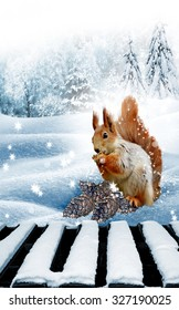 The squirrel in the winter woods. New Year card.