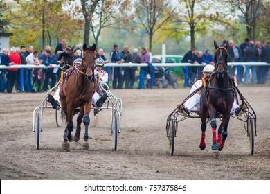 Srbobran, Serbia October 22, 2017: Horse racing Memorial Bata General from Srbobran in Serbia
