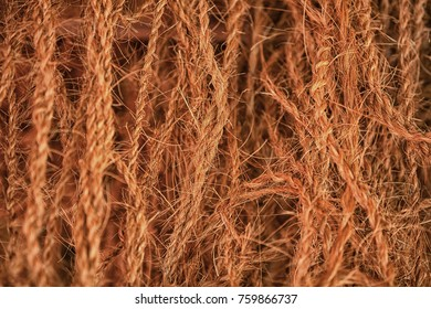 Sri Lanka. Brown ropes from coconut fibers