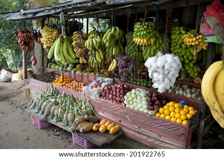 Sri Lanka Fruit Stand