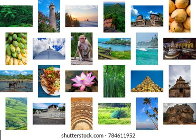 Sri Lanka travel concept collage