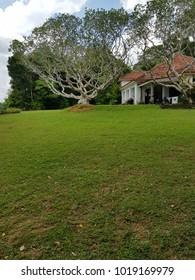 Sri Lankan Country Home