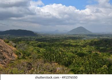 Sri Lankan tropical forest landscape near Dambulla