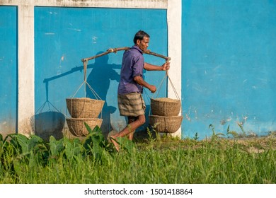 SRIMANGAL, BANGLADESH - 13 APRIL, 2018: A farmer carries baskets of harvested rice on a carrying pole.