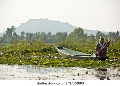 Srinagar, India, 2012: woman on a boat with Hari Parbat fort in the background