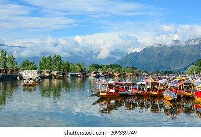 SRINAGAR, INDIA - JUL 21, 2015. Lifestyle in Dal lake, local people use 'Shikara', a small boat for transportation in the lake of Srinagar, Jammu and Kashmir state, India.