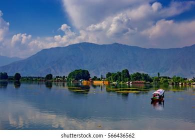 SRINAGAR, INDIA - JUNE 29, 2014 : Lifestyle in Dal lake, local people use 'Shikara', a small boat for transportation in the lake of Srinagar, Jammu and Kashmir state, India