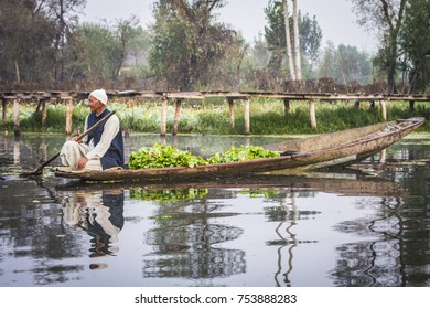 SRINAGAR, INDIA - October 2017: Dal Lale in Srinagar, India. Early morning vegetable market, man selling greenery and vegetables from the boat in Srinagar, Jammu and Kashmir, India