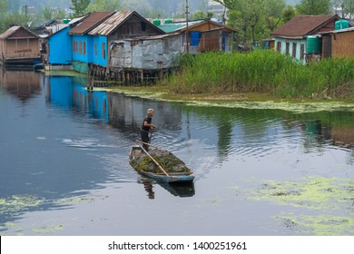 Srinagar, Jammu and Kashmir, India - April 16, 2019 : Kashmiri men with old wooden boat rowing collect alga or seaweed for agriculture on Dal Lake daily early morning in Kashmir