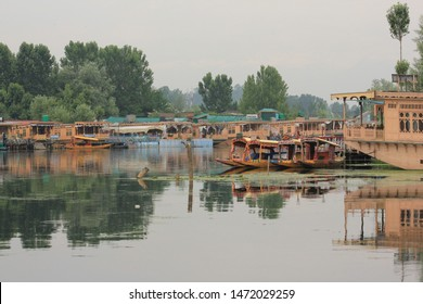 Srinagar, Jammu and Kashmir / India - June 23 2014: A beautiful view of the Dal Lake in Srinagar with traditional boats known as shikaras floating on it