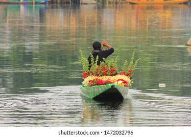 Srinagar, Jammu and Kashmir / India - June 23 2014: A boatman on his shikara or traditional boat which is full of flowers at Dal Lake in Srinagar