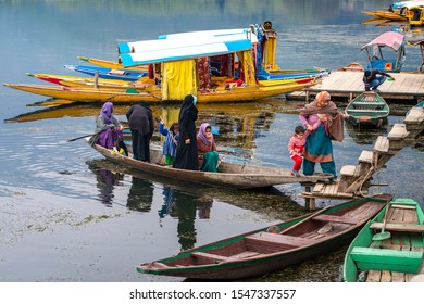 Srinagar,10 April ,2016  Young Kashmiri girls peddling  small wooden boat for transporting family members  to reach Ghat No.19 Jetty in Dal Lake  with shikaras in background,Kashmir, India ,Asia