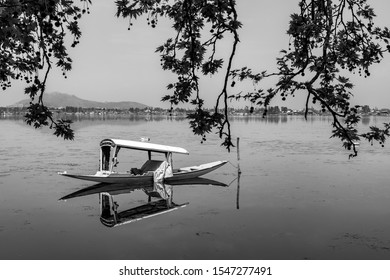 Srinagar,13 April ,2016 : View of  single Shikara boat parked isolated in  Dal Lake through tree branches with reflection of  mountains in background in black and white,Kashmir, India, Asia