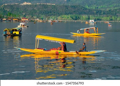 Srinagar,14 ,April ,2016 :  View of Dal Lake with Shikara boats  in evening  golden light with mountains in background .  Famous destination  for holidays ,Kashmir, India ,Asia