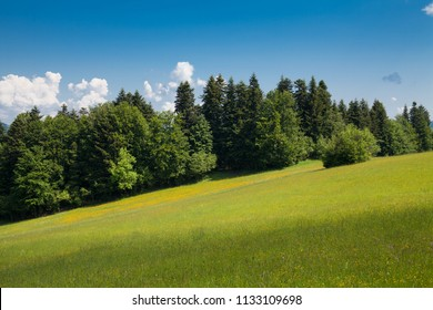 Sromowce Nizne mountain trail on Trzy Korony. Wandering around the Pieniny national park in Poland.