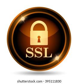 SSL icon. Internet button on white background.