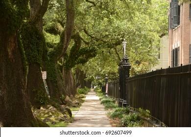 St Charles Street Stroll
