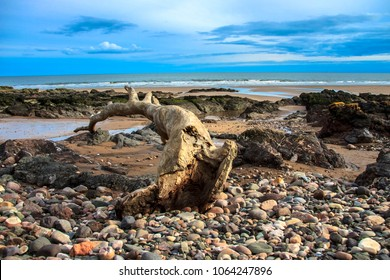 St Cyrus beach. Angus, Aberdeenshire, Scotland, United Kingdom.