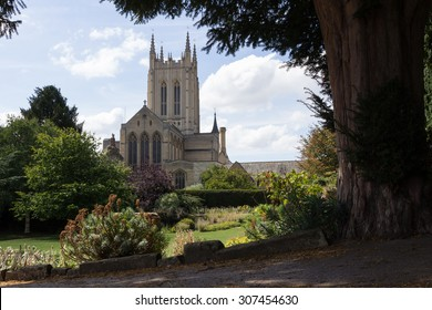 St Edmundsbury Cathedral with tree in foreground