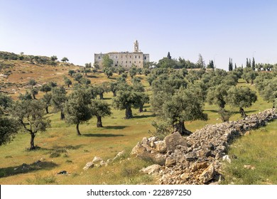 St. Elias Monastery and Olive Tree Field- Jerusalem