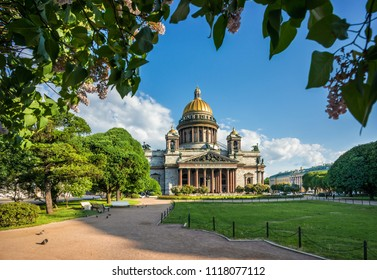 St. Isaac's Cathedral under the blue sky and lilacs in the park in St. Petersburg on a summer sunny morning