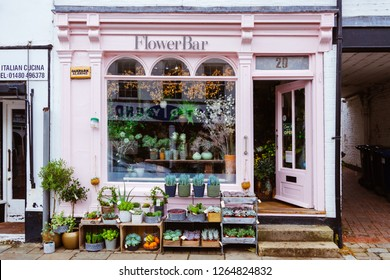 ST IVES, CAMBRIDGESHIRE, ENGLAND - SEPTEMBER 20, 2018: Vintage flower shop facade with colorful houseplant display.
