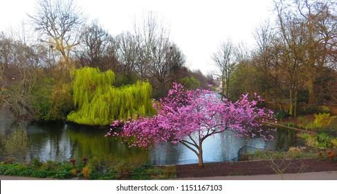 St. James Park in London, England, UK.