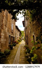 St Jean de Cole has been officially classified as one of the most beautiful villages in France (les plus beaux villages de France).