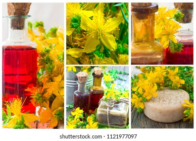 St John's wort collage