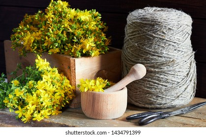 St John's wort herb in wooden box, hypericum plant flowers cut in the field fresh laying on wooden table nearby mortar, pounder, antique linen threads and scissors on dark background, closeup