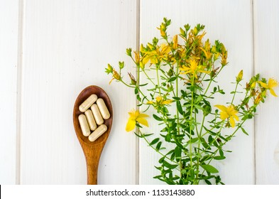 St. John's wort, herbal medical pills. Studio Photo