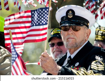 St Joseph Michigan May 2, 2014: A retired naval officer waves an american flag, as he rides in the Blossom time parade in Michigan USA
