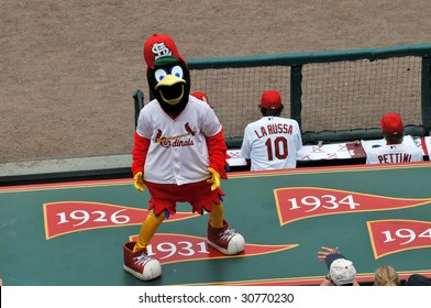 ST LOUIS - MAY 23: Fredbird, the official mascot of the Saint Louis Cardinals at Busch Stadium in St. Louis, MO on May 23, 2009