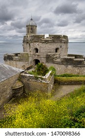 St Mawes Castle with Yellow Bedstraw wildflowers on the coast of Carrick Roads Falmouth Bay Atlantic Ocean in St Mawes, Cornwall, England - June 11, 2019