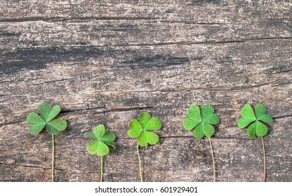 St Patrick day background with shamrock clover leaf, Irish festival symbol