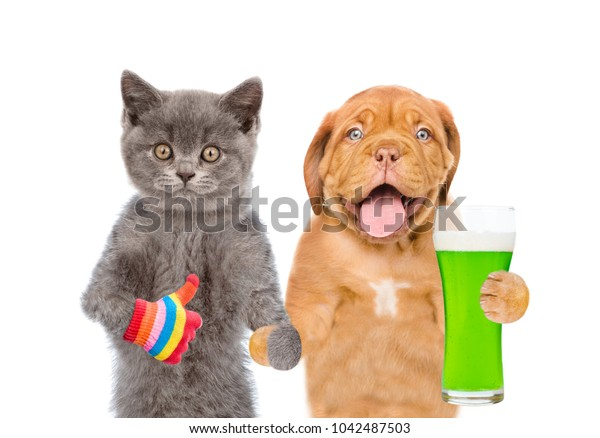 St Patrick's Day concept. Cat and dog with a glass of green beer showing thumbs up. isolated on white background