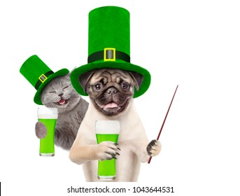 St Patrick's Day concept. kitten and puppy in the hats of the leprechaun with a glasses of green beer and pointing stick. isolated on white background