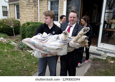 ST PAUL, MINNESOTA / USA - APRIL 18, 2016: Father and son carrying our deceased granddog Gunnar to the vet for eventual cremation (whaa).