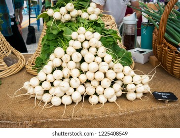 St. Pete Beach, Florida, November 2, 2018: Radishes on display for sale at a weekend farmers market in St. Pete Beach, Florida.