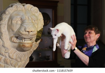 St. Petersburg / Russia - 06.22.2018: Psychic Achilles the cat from Hermitage who predicts predicts results of World Cup  matches look at lion sculpture in museum