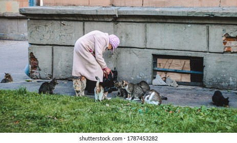 St. Petersburg, Russia - March 17, 2020: An unknown elderly woman in a coat and a pink hat feeds street cats.