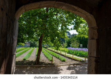 St Remy de Provence, Bouches du Rhone, Provence, France, 11.05.2019. Yard in  the monastery of St. Paul de Mausole.