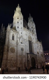 st Stephan cathedral at night in Vienna.