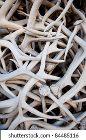 A stack of antlers