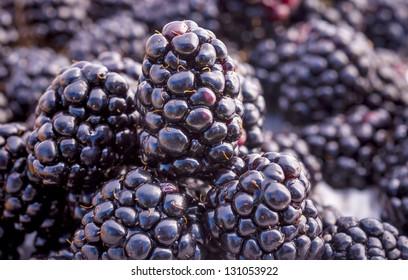 Stack of Blackberries