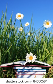 Stack of books on summer background with grass, ox-eye daisy flowers and blue sky