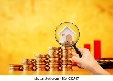 Stack coin and bar graph with grow and hand hold a magnifying glass searching for a new home on brown background, Loan for real estate or save money for buy a house to family in the future concept.