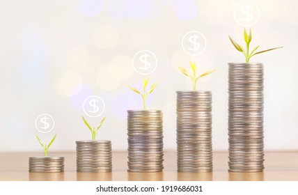 stack coin with growth seed money saving concept