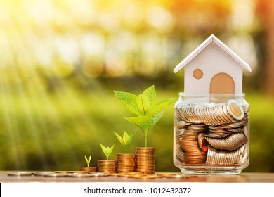 Stack coin and tree with growing and home put on the money in the jar bank for family put on the wood in the public park, Saving for buy house and real estate or loan for business investment concept.